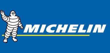 michelin loyalty company